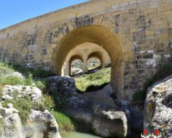 8 Mayo Gozo Malta (60)