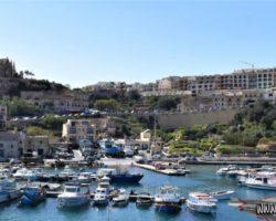 8 Mayo Gozo Malta (67)