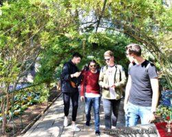 9 Abril St Anton Gardens, Mdina y Dingli Malta (11)