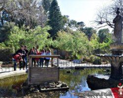 9 Abril St Anton Gardens, Mdina y Dingli Malta (16)