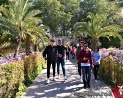 9 Abril St Anton Gardens, Mdina y Dingli Malta (17)