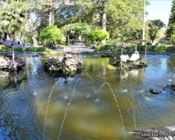 9 Abril St Anton Gardens, Mdina y Dingli Malta (18)