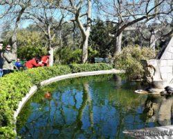 9 Abril St Anton Gardens, Mdina y Dingli Malta (9)