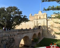11 Noviembre Mdina Free Tour Malta (2)
