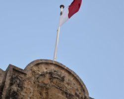 11 Noviembre Mdina Free Tour Malta (34)