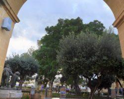 16 Noviembre Valeta Free Tour Malta (12)