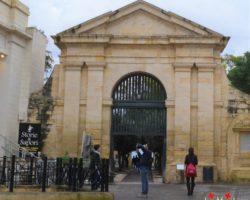 16 Noviembre Valeta Free Tour Malta (8)