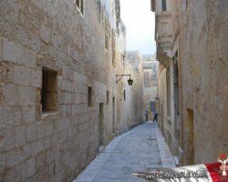 25 Noviembre Mdina Free Tour Malta (4)