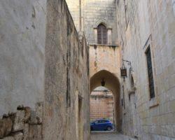 25 Noviembre Mdina Free Tour Malta (6)