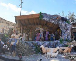9 Noviembre Valeta Free Tour Malta (4)