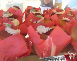 28 abril Strawberry Festival(31)